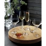 Tour-Red-Wine-Glass-142